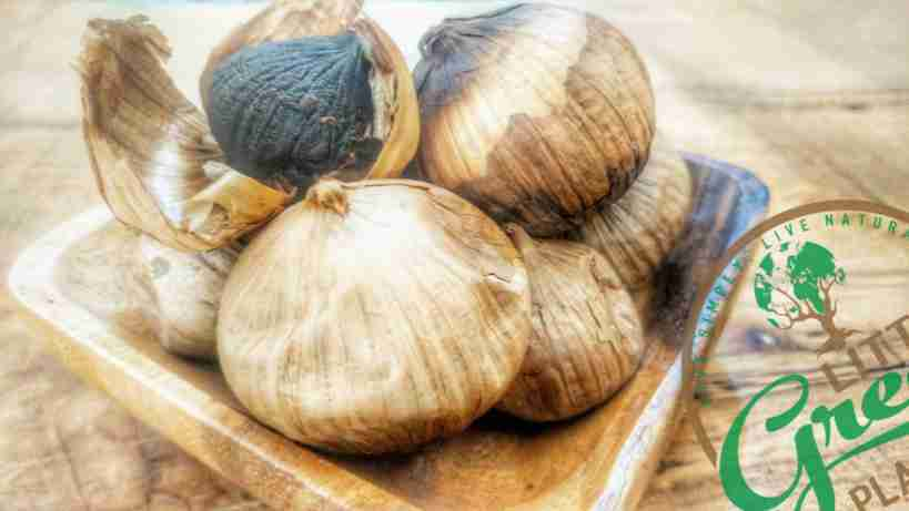 DIY Black Garlic